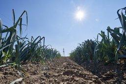 Fribourg se dote d'un plan climat comprenant 115 mesures