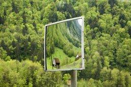 «La biodiversité est essentielle à l'homme»
